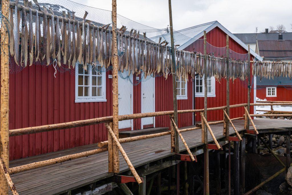 Nusfjord 03